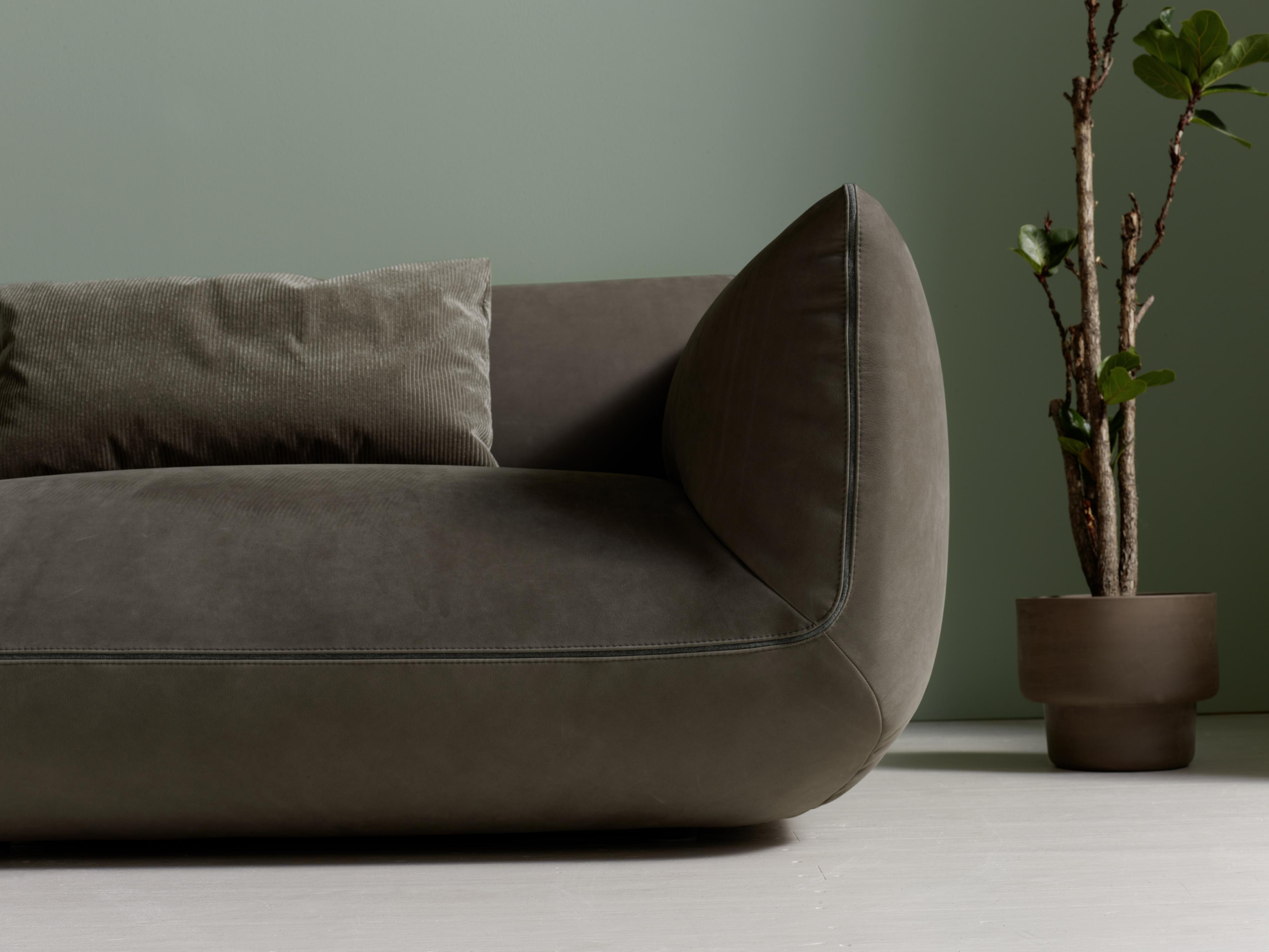 Jalis21 New Down To Earth Sofa Comfort Cor